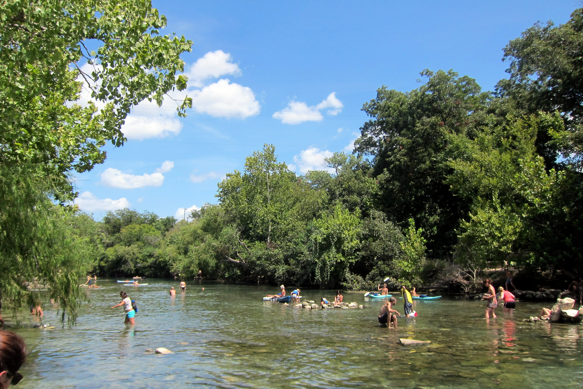 Barton Creek being enjoyed by swimmers and paddle boarders