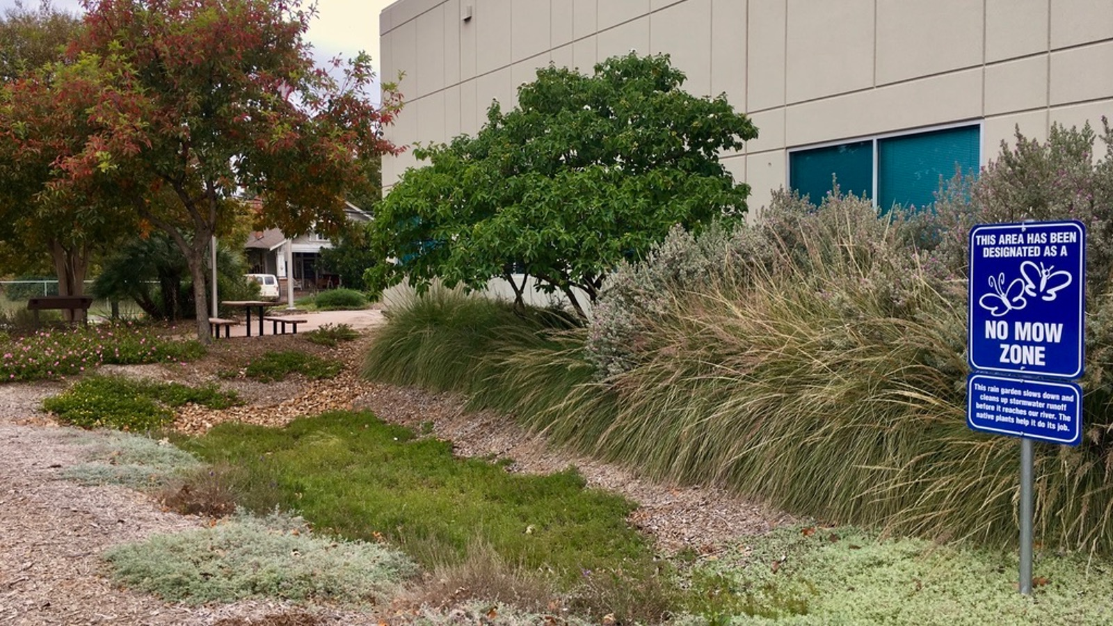 <h4>WATER POLLUTION</h4><h5>Rain gardens and other nature-based features can filter out up to 90% of pollutants in stormwater runoff.</h5><em>Anna Farrell-Sherman / Staff</em>
